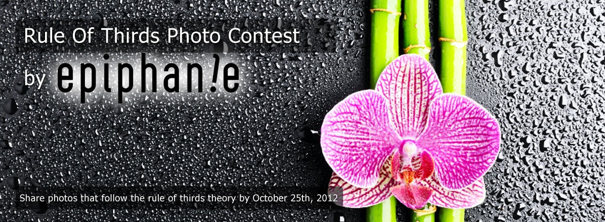 Rule of 3rds Photo Contest