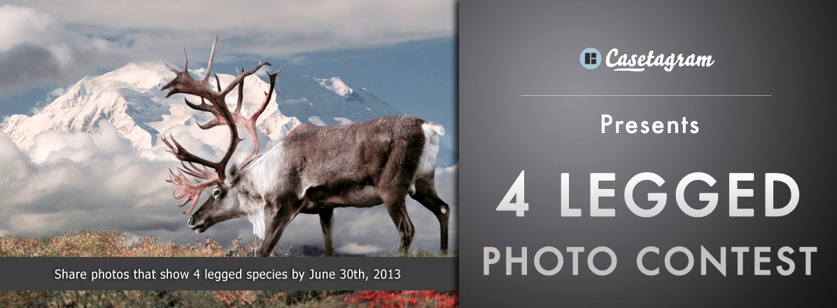 4 Legged Photo Contest