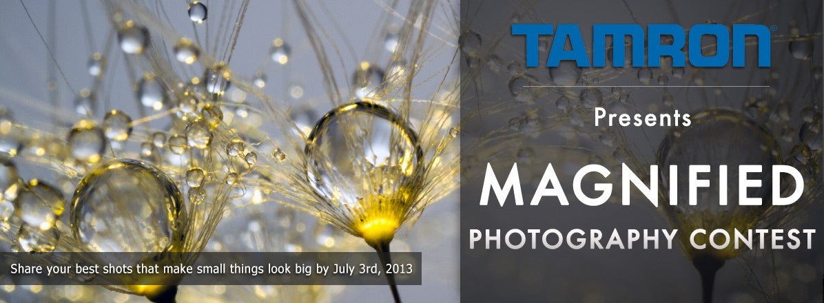 Magnified Photography Contest by Tamron