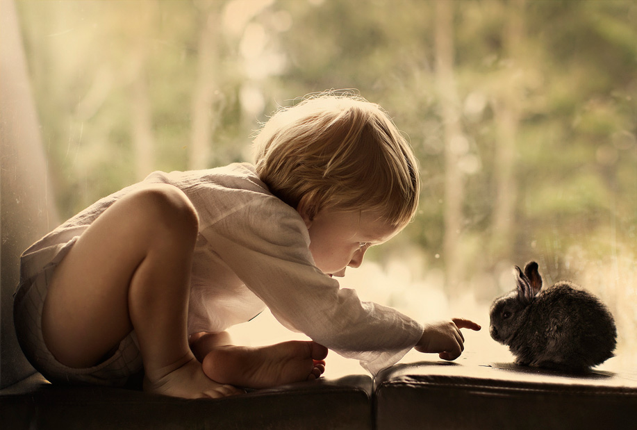Meet Guest Judge Elena Shumilova